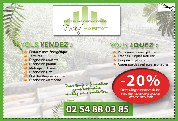 diagnostic immobilier devis diag location vente diag centre. Black Bedroom Furniture Sets. Home Design Ideas
